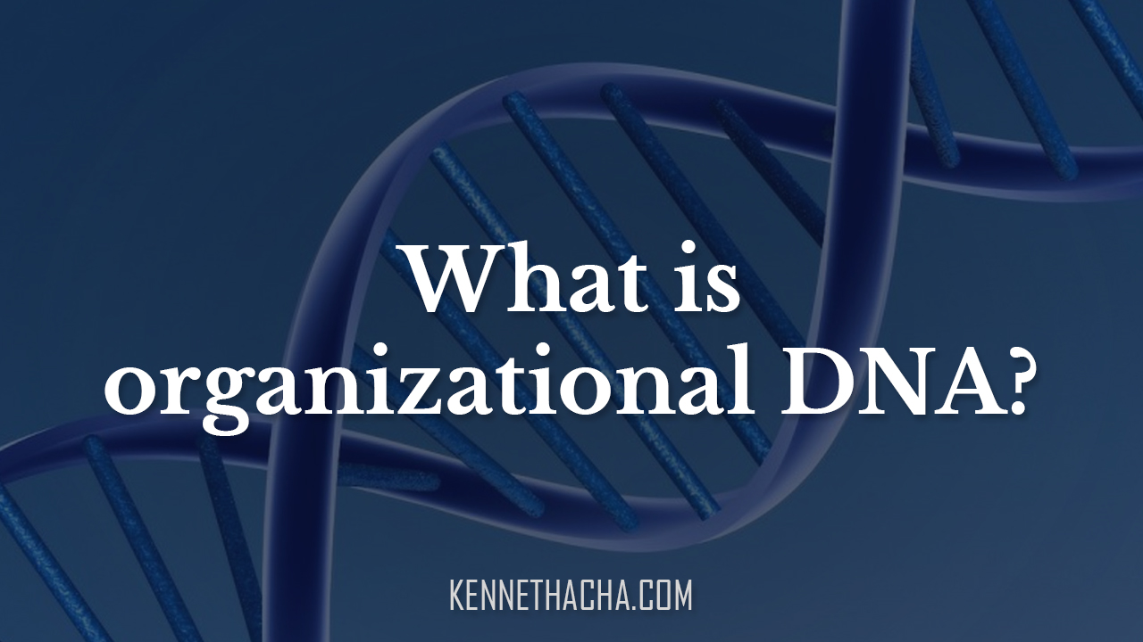What is organizational DNA?
